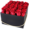 Цветы в квадратной коробке