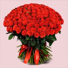 Букет из 151 розы Эль Торо