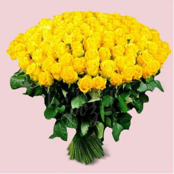 Букет из 151 розы Пенни Лейн