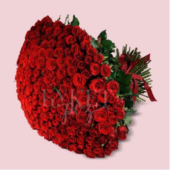 Букет из 251 розы Маричка